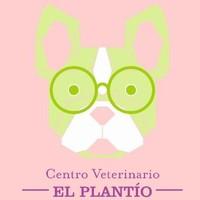 Centro veterinario El plantío